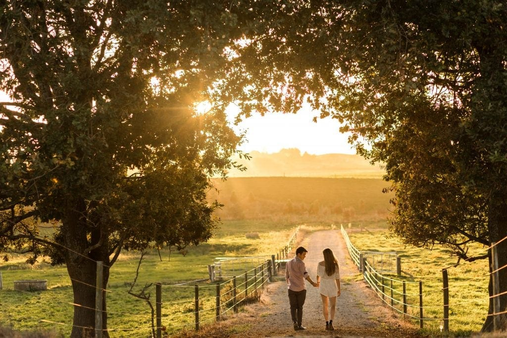Jordan and Alanah chose to have their engagement photos on a family farm in Matamata